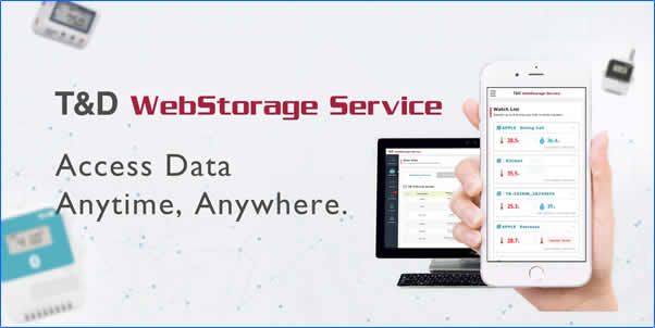 T and D WebStorage Service